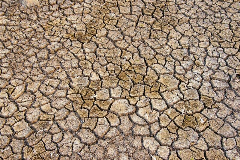 Почва засушливая, нехватка воды сезона стоковое фото