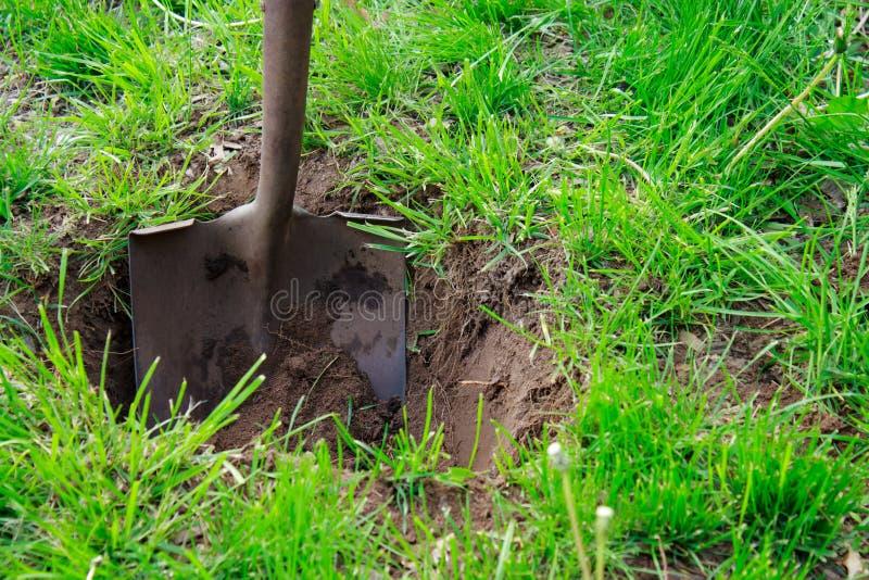 почва лопаткоулавливателя стоковая фотография rf