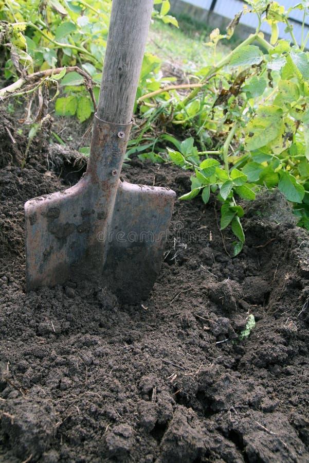 почва лопаткоулавливателя стоковые фото
