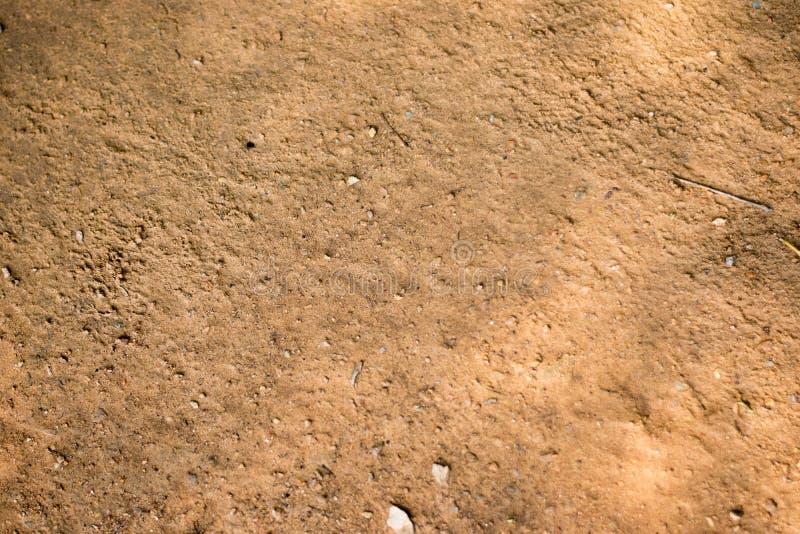 Почва пола в утре стоковое изображение