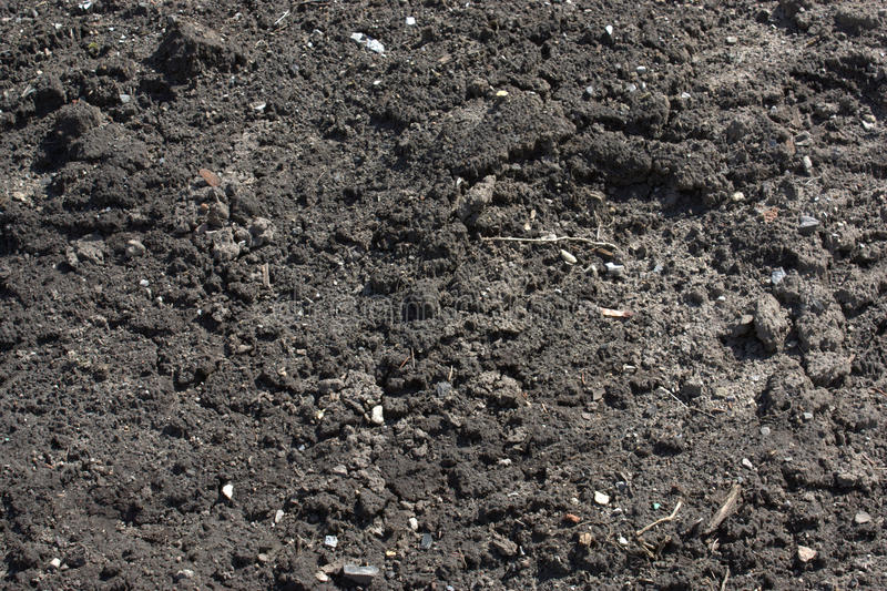 почва сада стоковые фотографии rf