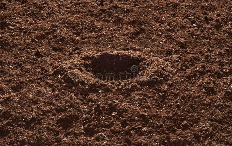 почва сада стоковое изображение