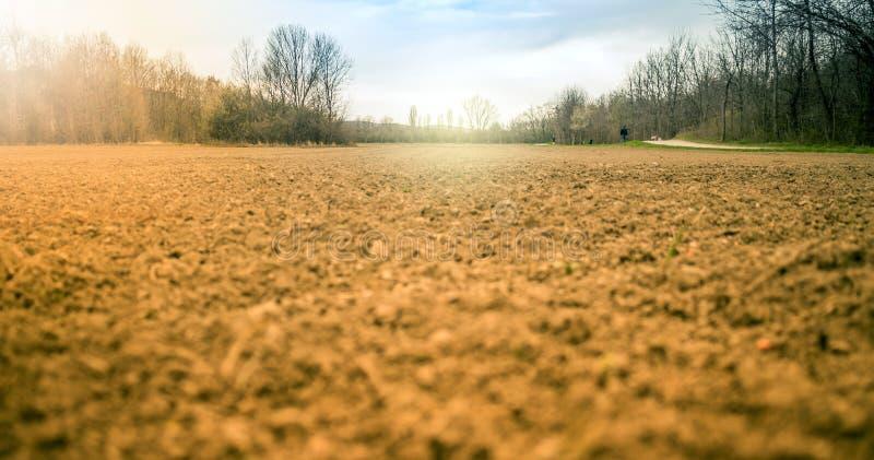 Почва Cropland стоковое фото rf