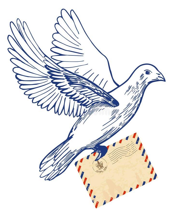 Голубь и письмо картинка