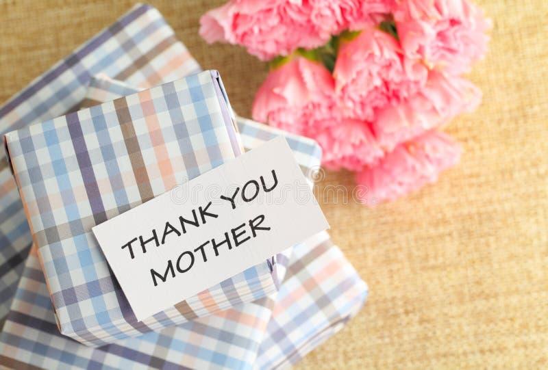 Подарок и розовый цветок гвоздик на День матери стоковые изображения rf
