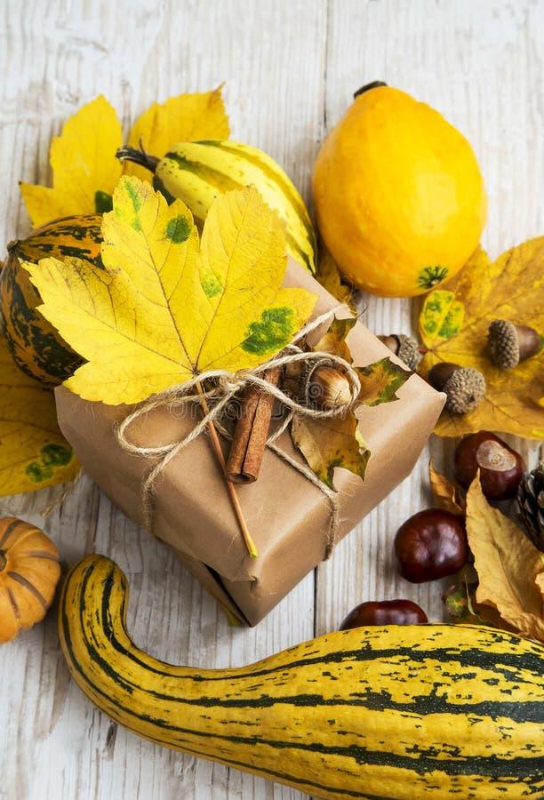 Подарок осени благодарения с украшением тыкв и каштанов стоковые фотографии rf