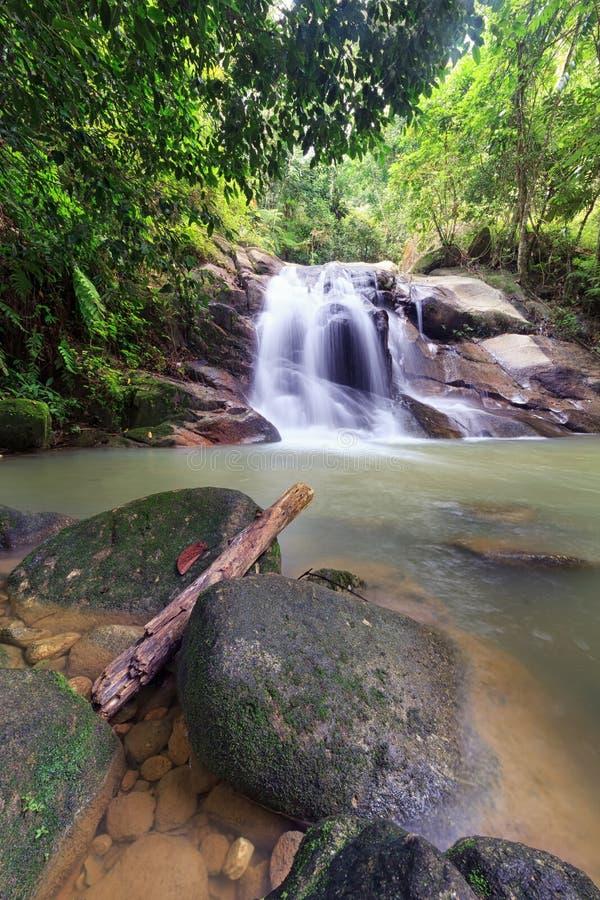 Подача водопада стоковое изображение rf