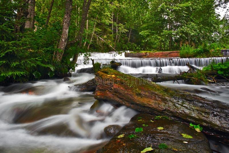 Подача реки стоковое фото