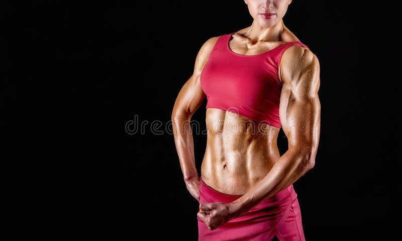 подбрюшные мышцы стоковая фотография