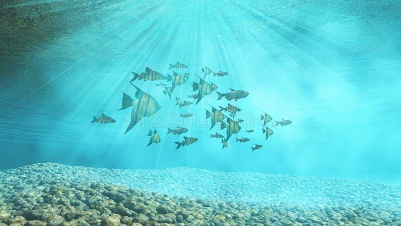 подводная предпосылка 3D с мелководьем рыб бесплатная иллюстрация