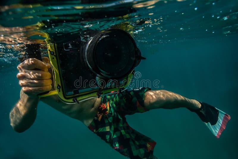 Подводное фото стоковое фото