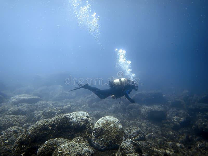 Подводный водолаз в подводном мире стоковое фото rf