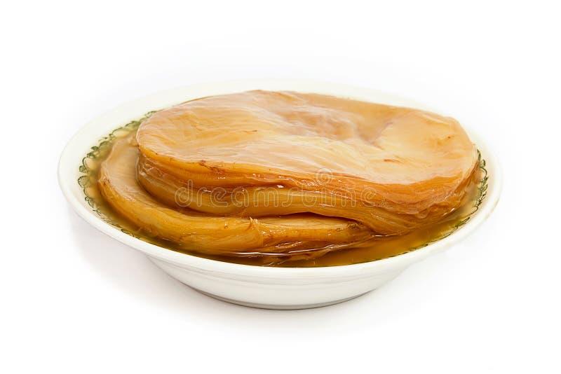 Полезный гриб Kombucha стоковые изображения