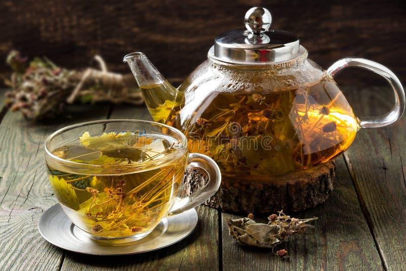 Полезный чай с высушенной одичалой клубникой стоковые фотографии rf