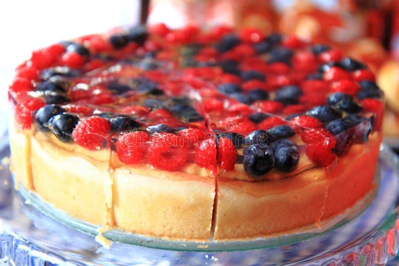 Поленики и торт голубик стоковая фотография