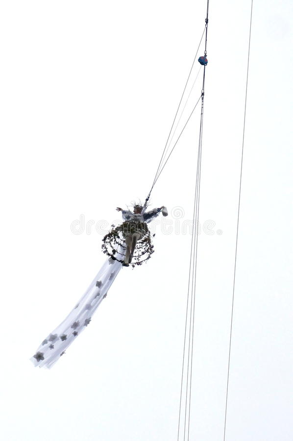 Полет орла, конец вверх, Венеция стоковое фото rf