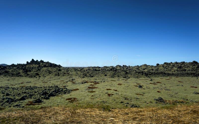 Поле лавы Исландии покрытое с зеленым мхом стоковое фото rf