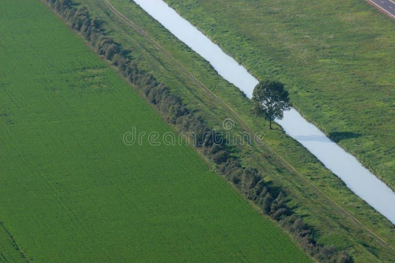 Поле, дерево и ручеек стоковая фотография rf