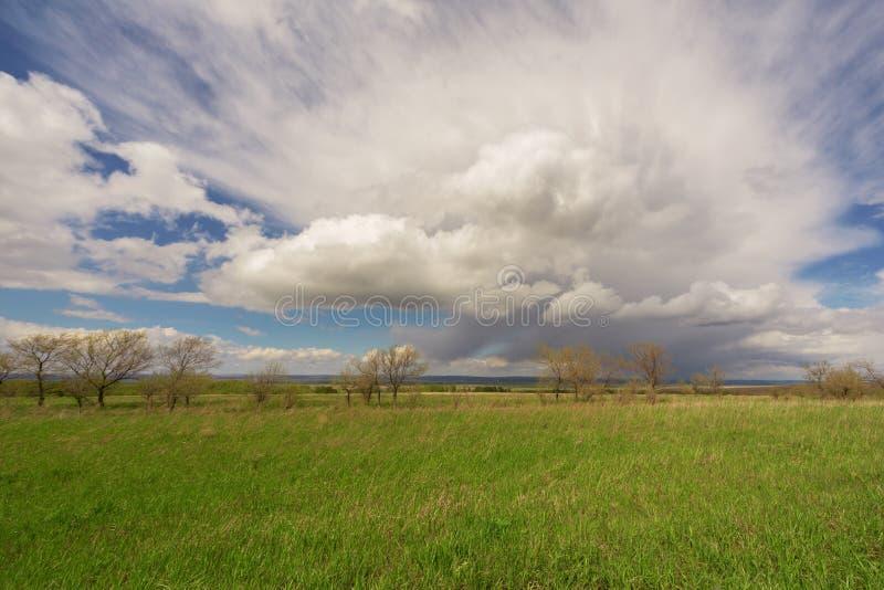 Download Поле, деревья и голубое небо Стоковое Изображение - изображение насчитывающей countryside, облако: 33739621