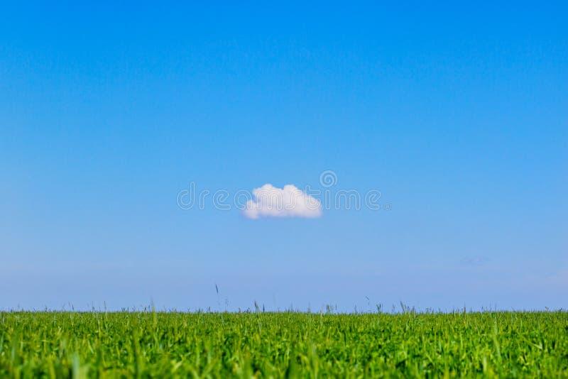 Поле и одно облако стоковые изображения
