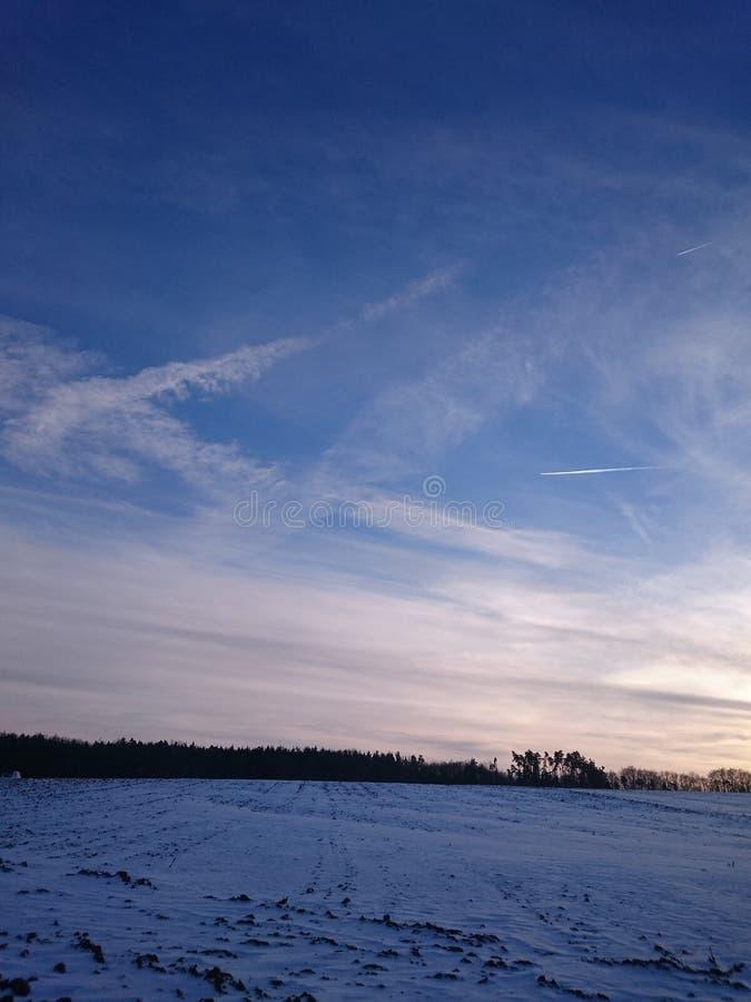 поле морозное стоковые фотографии rf