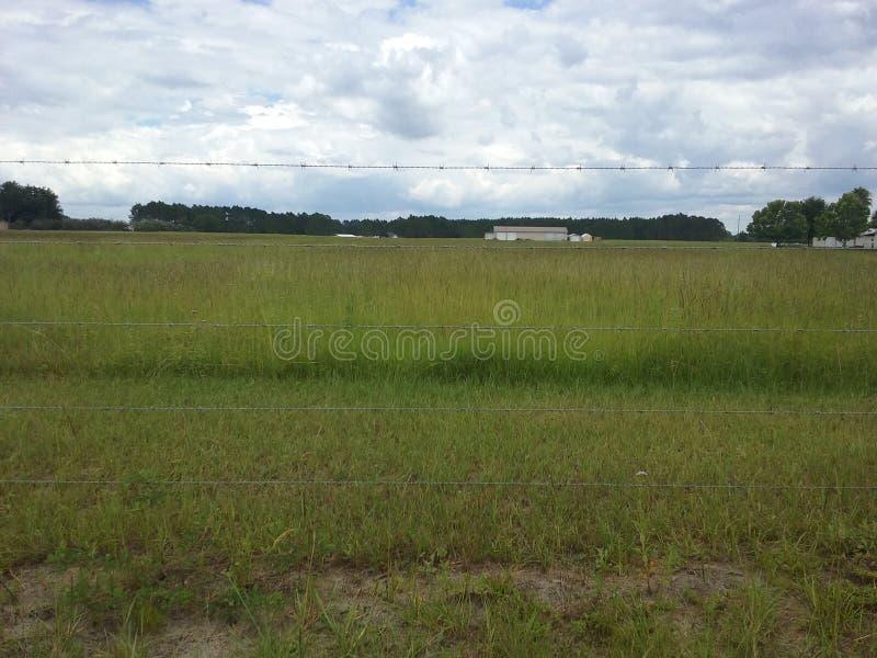 поле открытое стоковое фото rf