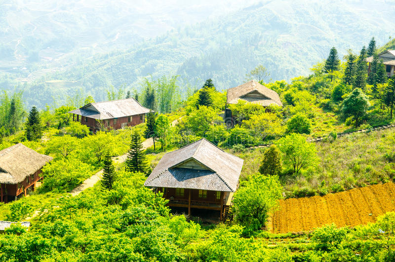 Поле риса PA Sa (Вьетнам) стоковое изображение