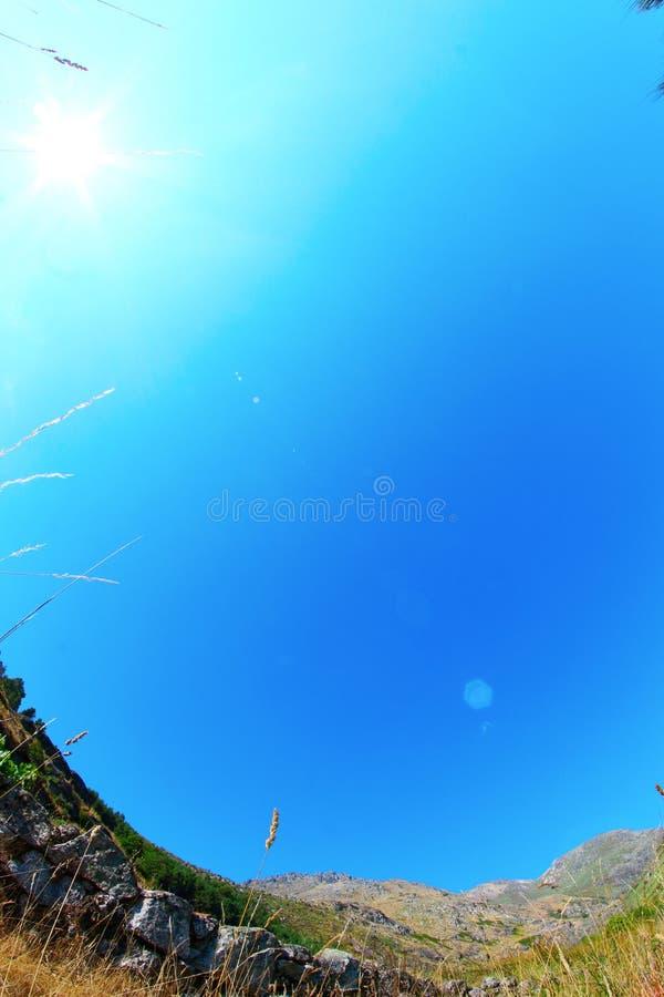 Поле с солнцем в голубом небе стоковые изображения