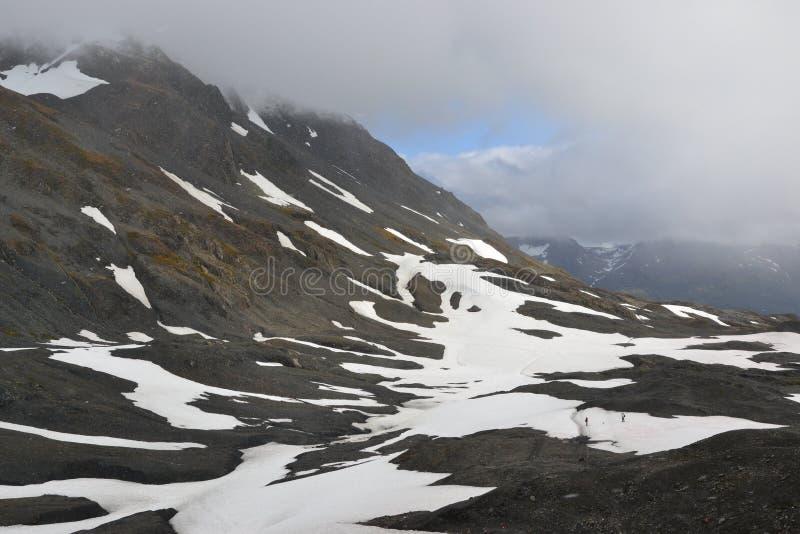 Поле льда Аляски Seward Harding стоковое фото