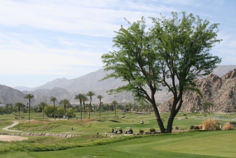 Поле для гольфа пустыни стоковое фото rf