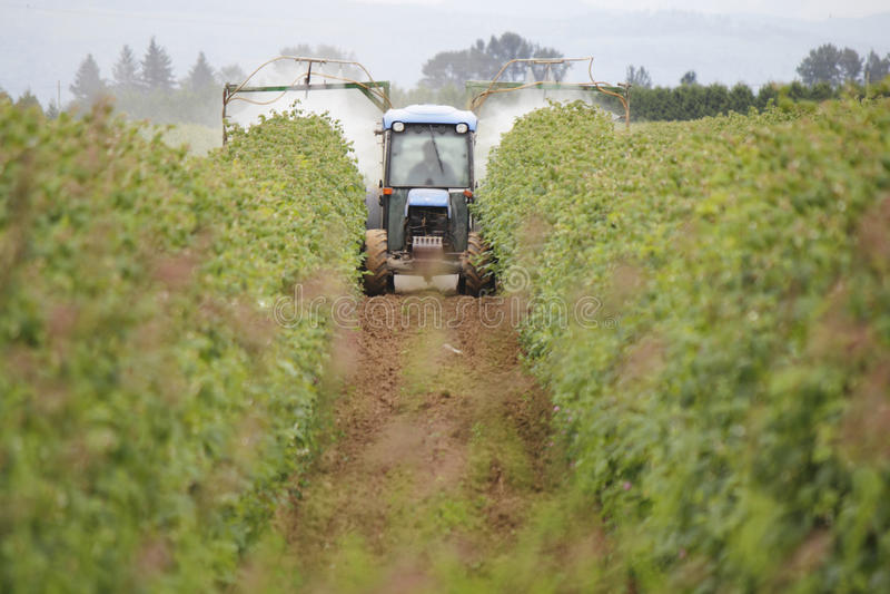 Поливка отравляющими веществами на ферме Вашингтона стоковое фото rf