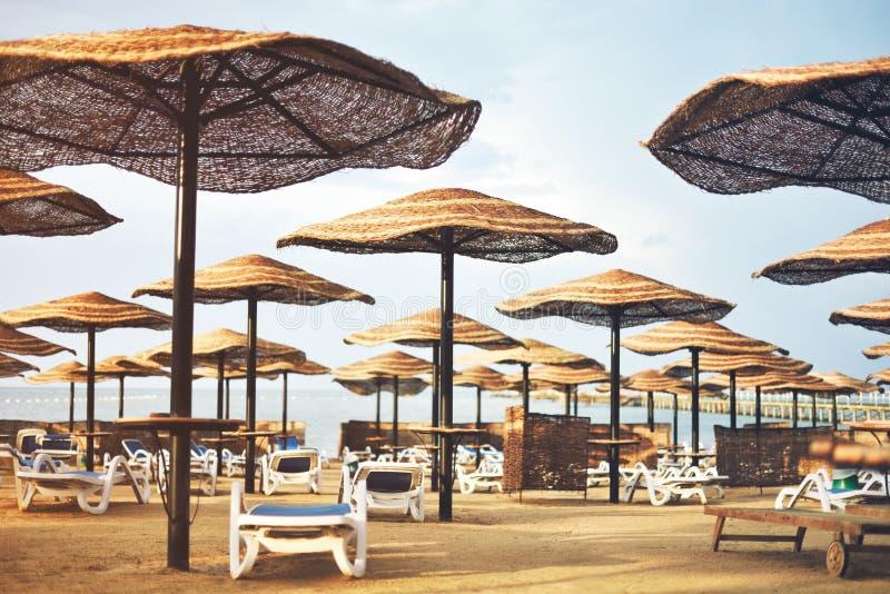 Подкрашиванная зона пляжа гостиницы изображения с зонтиками и loungers солнца, h стоковые фото