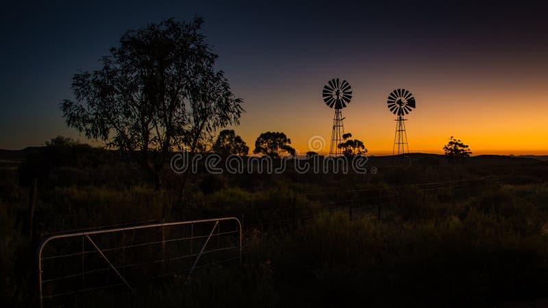 По мере того как солнце поднимает, ветрянки фермы silhouetted против золотого света стоковые фотографии rf