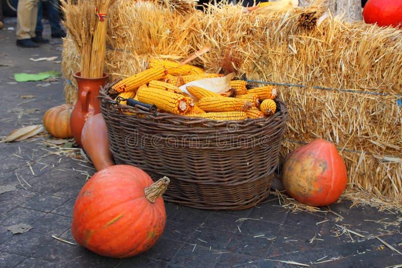 Полная корзина с кукурузными початками стоковые изображения
