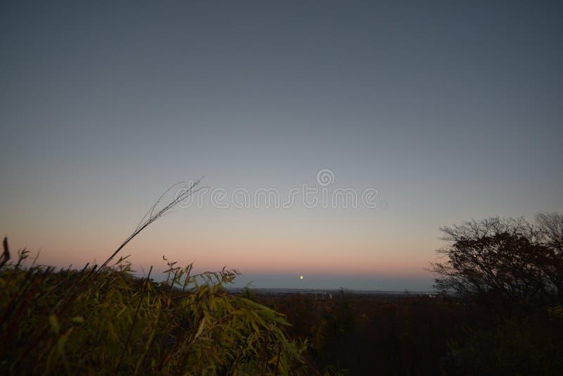Поднимать луны Supermoon супер стоковое фото rf