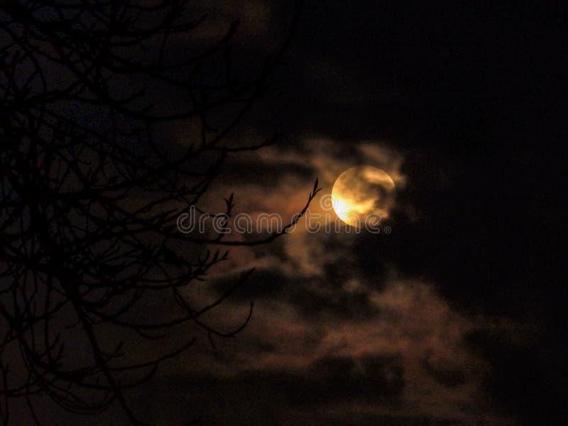 Поднимая луна над городским пейзажем Окленда стоковое фото