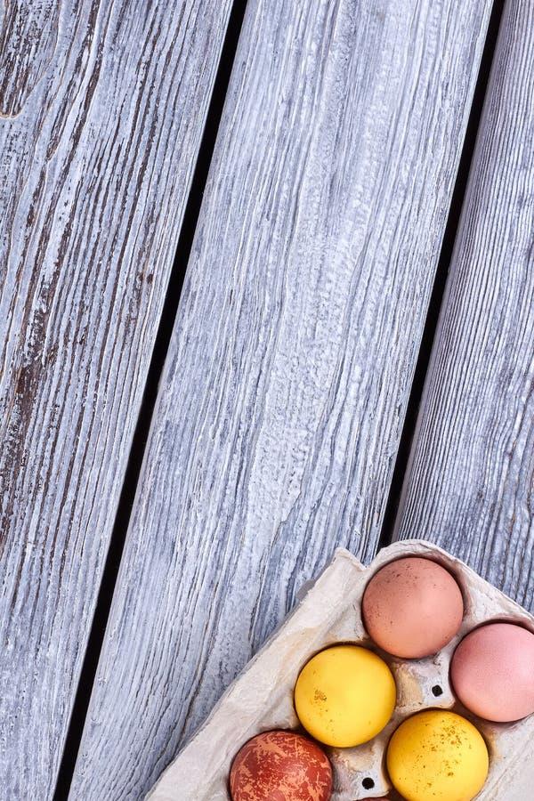 Поднос пасхальных яя стоковое изображение rf