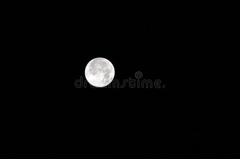 Полнолуние на ночном небе стоковые фотографии rf