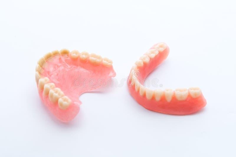 Полный denture на белой предпосылке стоковая фотография