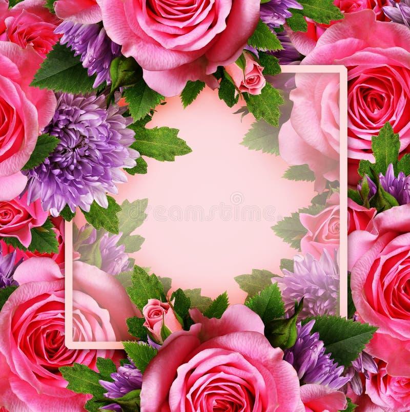 Подняли и цветки хризантемы с местом для текста стоковые фотографии rf