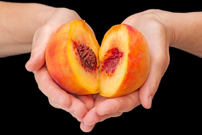 Половины зрелых персиков в ладонях стоковые фото