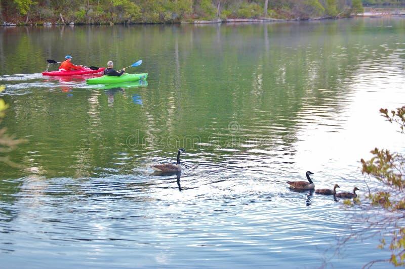 Положение Нью-Йорк США озера Sebago стоковое фото rf