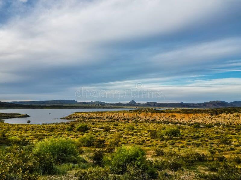 положение парка озера alamo Аризоны стоковые фотографии rf