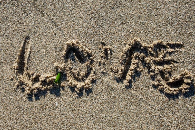 Подпишите внутри песок стоковое изображение rf