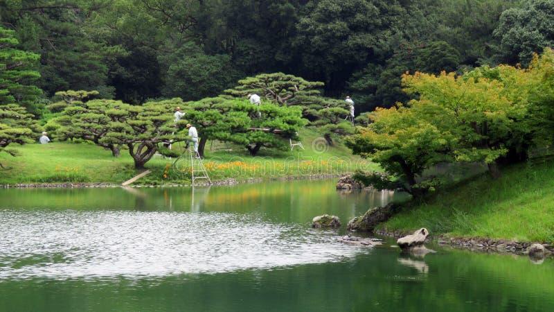Подрезая деревья в саде Takamatsu Японии Ritsurin Koen стоковое изображение rf