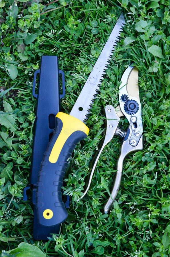 Подрезая ножницы стоковое изображение rf