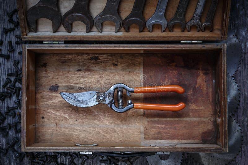 Подрезая ножницы стоковые изображения rf