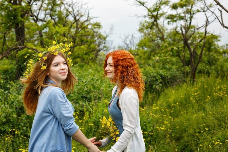 Подруги встречая в парке стоковая фотография