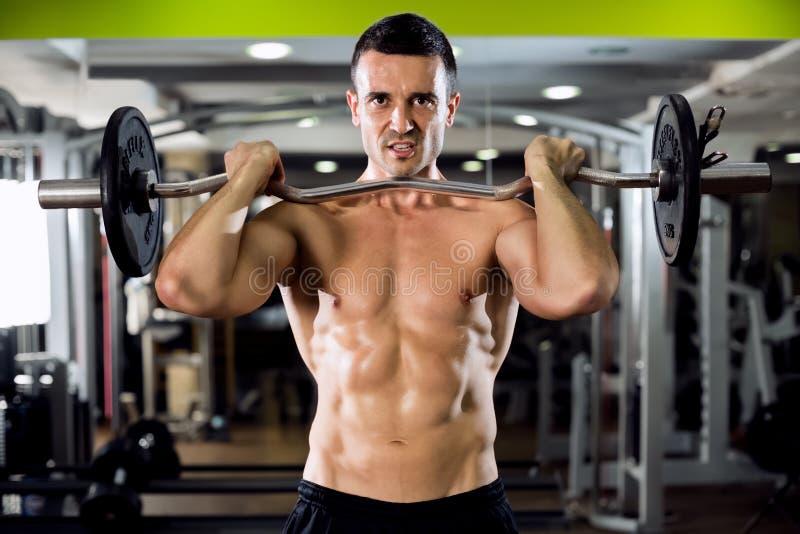 Подходящая мужская делая тренировка бицепса стоковые фотографии rf