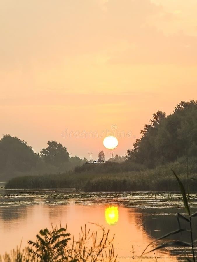 Подъем солнца лета стоковые изображения